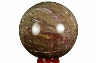 "Buy 2.9"" Colorful Petrified Wood Sphere - Madagascar - #169138"