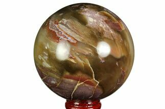 "3.05"" Colorful Petrified Wood Sphere - Madagascar For Sale, #169139"