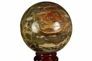 "Buy 3.4"" Colorful Petrified Wood Sphere - Madagascar - #169144"