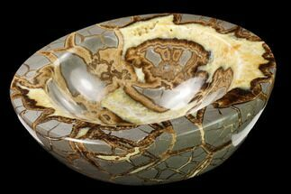 "7.6"" Polished Septarian Bowl With Ammonite Fossil - Utah For Sale, #169532"