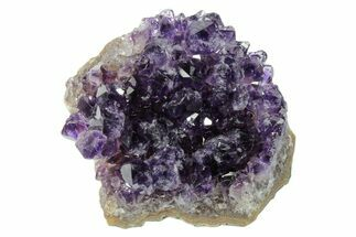 "3.5"" Dark Purple, Amethyst Crystal Cluster - Uruguay For Sale, #171800"