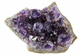 Quartz var. Amethyst - Fossils For Sale - #171801