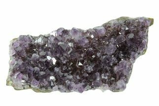 "3.7"" Dark Purple, Amethyst Crystal Cluster - Uruguay For Sale, #171809"