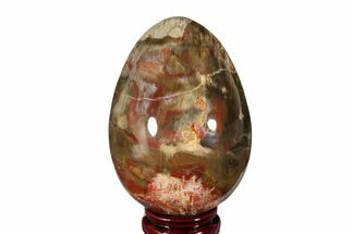 "5.05"" Colorful, Polished Petrified Wood Egg - Madagascar For Sale, #172526"