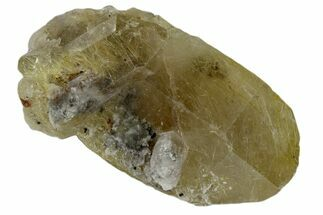 "Buy 2.05"" Rutilated Quartz Crystal Cluster - Brazil - #172975"