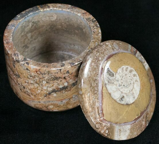 Small Fossil Goniatite Jar (Brown) - Stoneware