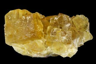 "Buy Bargain, 1.4"" Yellow Cubic Fluorite Crystal Cluster - Morocco - #173959"