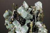 "3.5"" Epidote Crystals with Chlorite Included Adularia - Pakistan - #175090-1"