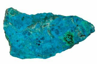 "2.7"" Polished Chrysocolla and Malachite - Bagdad Mine, Arizona For Sale, #175520"