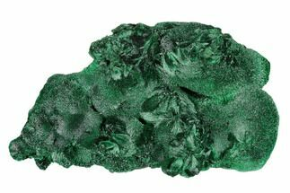 "4.2"" Silky, Fibrous Malachite Cluster - Congo For Sale, #175370"