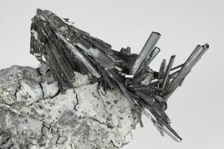 Stibnite  - Fossils For Sale - #175842