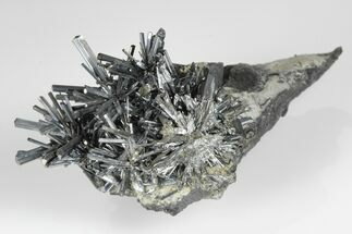 Stibnite  - Fossils For Sale - #175908