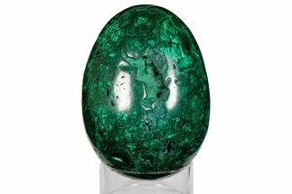 "5.5"" Tall, Flowery Polished Malachite Egg - Congo For Sale, #176117"
