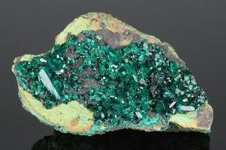 Dioptase - Fossils For Sale - #175947