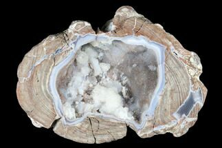 "6"" Crystal Filled Dugway Geode (Polished Half) - Utah For Sale, #176756"
