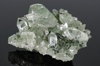 Anatase, Chlorite & Quartz - Fossils For Sale - #176820