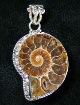Buy Fossil Ammonite Pendant - Sterling Silver - #16789