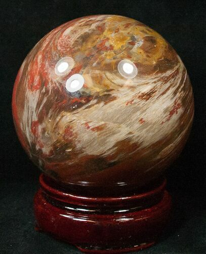 "2.8"" Colorful Petrified Wood Sphere"