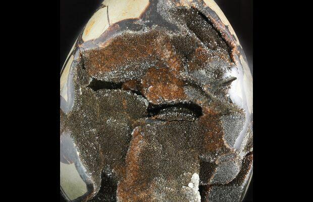 82 Septarian Dragon Egg Geode Black Crystals